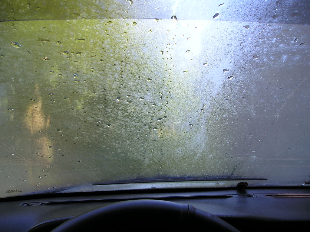 windshield.jpg